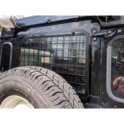 Rear door window guard - external